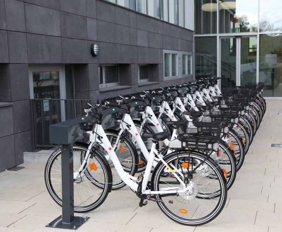bike_share_lineup